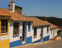 Coloured Houses